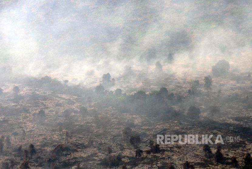 Asap mengepul dari kebakaran lahan gambut di Kecamatan Tanah Putih Kabupaten Rokan Hilir, Provinsi Riau, Selasa (21/2). Satgas Siaga Darurat Kebakaran Lahan dan Hutan Riau menyatakan kebakaran lahan terus mengancam terutama di daerah pesisir timur, yang di