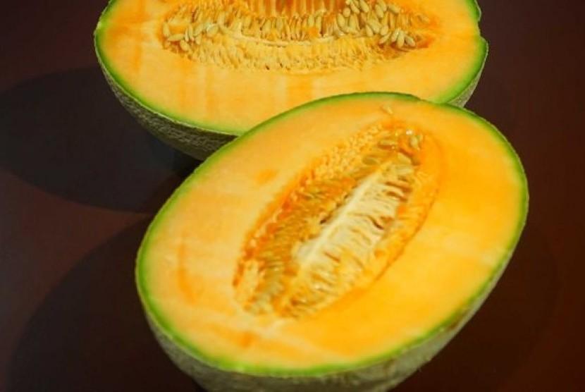 Bakteri Listeria pada buah rockmelon diketahui berasal dari pertanian Rombola Family Farms di New South Wales.