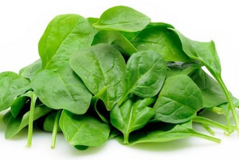 Image result for sayuran berdaun hijau