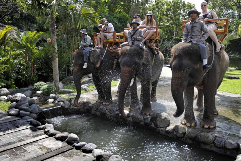 Beberapa wisatawan manca negara menikmati wisata menunggang gajah di Bali Zoo Park, Desa Singapadu, Gianyar, Bali.
