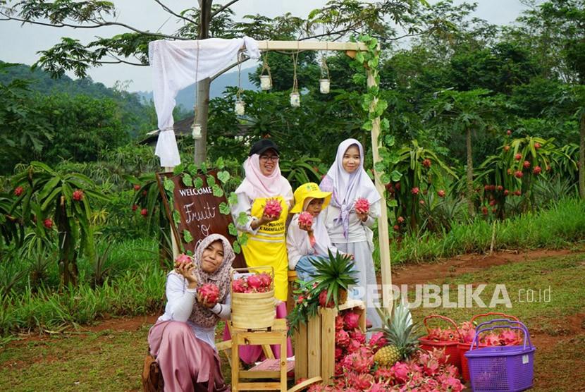 Berdonasi sambil memberdayakan ekonomi masyarakat pedesaan telah digiatkan Dompet Dhuafa di sejumlah daerah di indonesia.