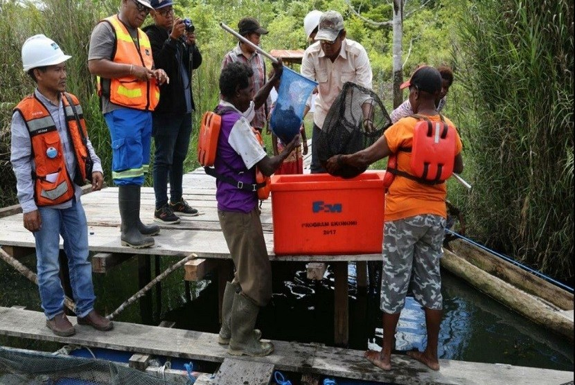Freeport Dukung Masyarakat Budidaya Ikan Nila