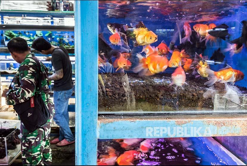 Industri Pengolahan Ikan Ditarget Tumbuh 10 Persen