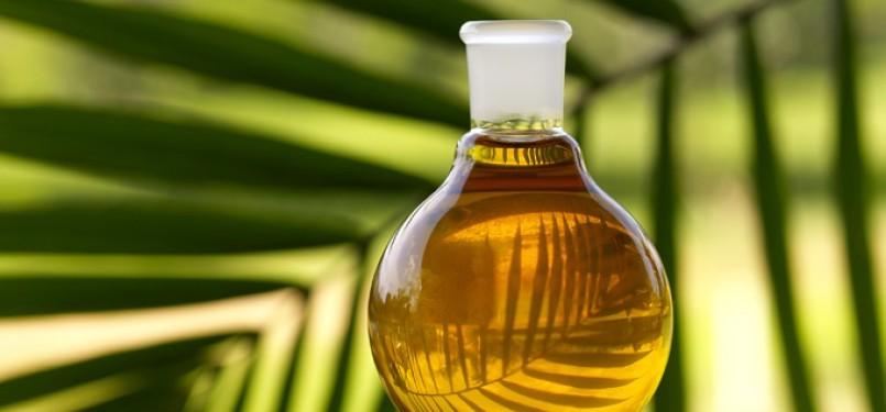 Minyak kelapa sawit (CPO) merupakan salah satu produk yang diajukan Indonesia ke dalam EG list