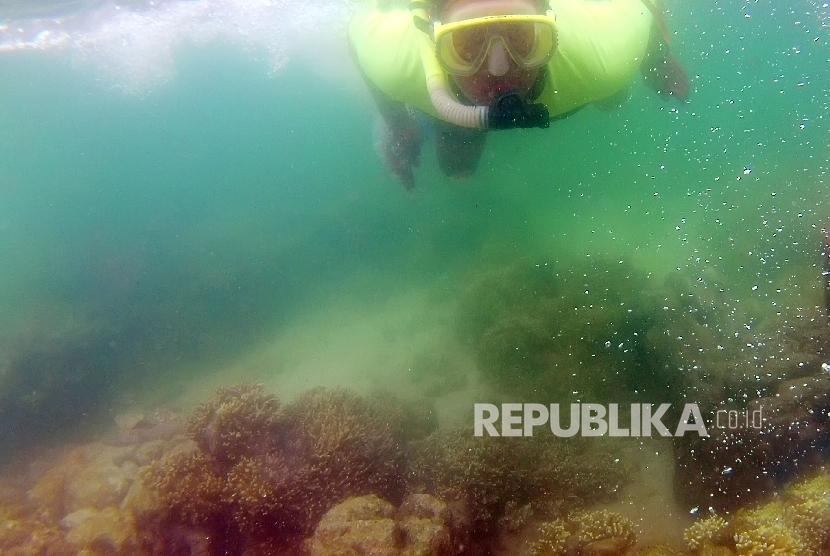 Diving Bunaken, Kota Manado, Provinsi Sulawesi Utara.