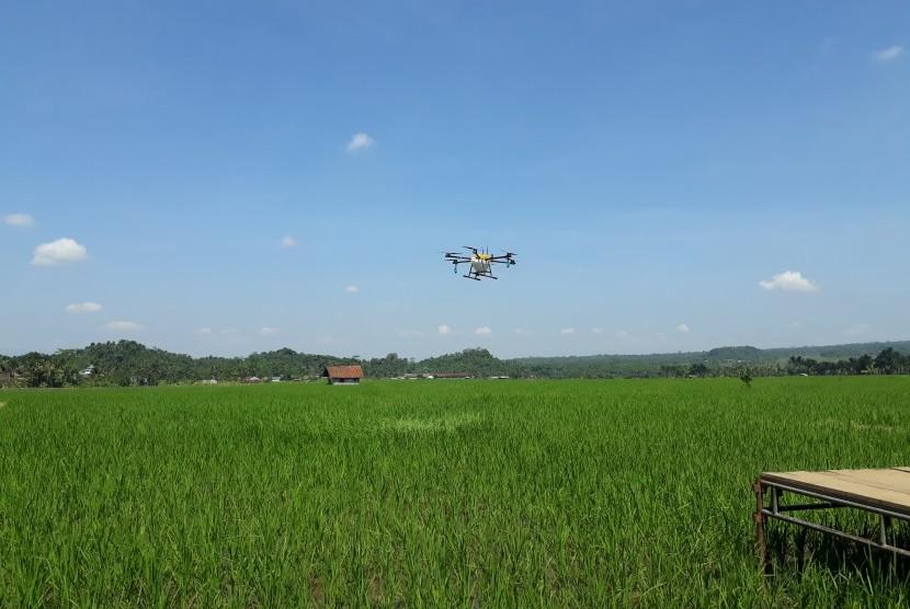 Drone (ilustrasi)