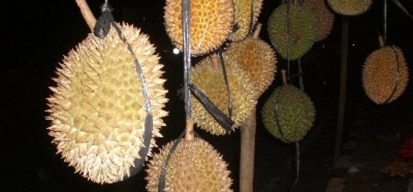 Durian, ilustrasi