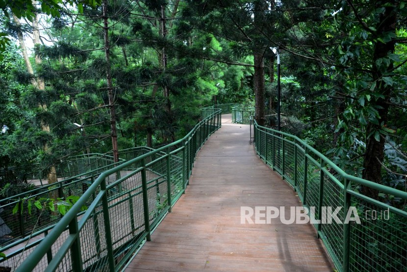 Forest Walk Bandung Salah Satu Terpanjang di ASEAN