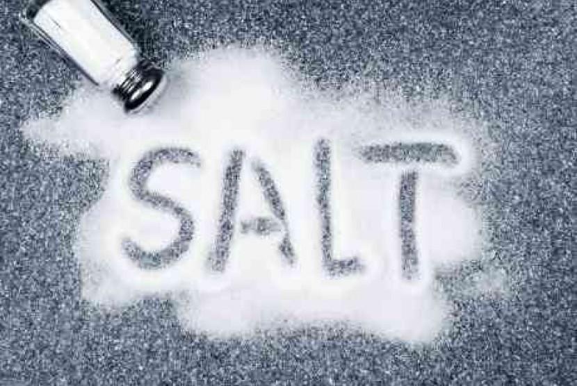 Hasil gambar untuk garam