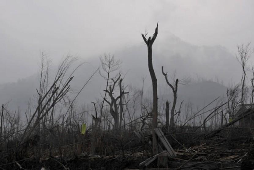 Hutan rusak akibat diterjang awan panas dan material vulkanik letusan Gunung Merapi 2010 lalu (ilustrasi)