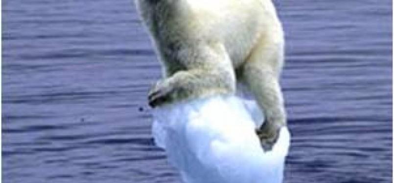 Ilustrasi Dampak Global Warming