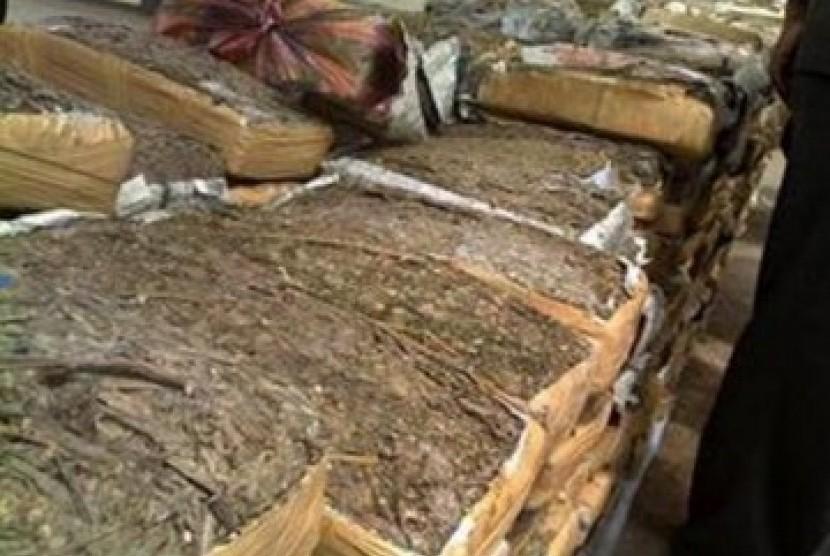 Polisi Amankan Ganja yang Terbungkus Kertas Nasi
