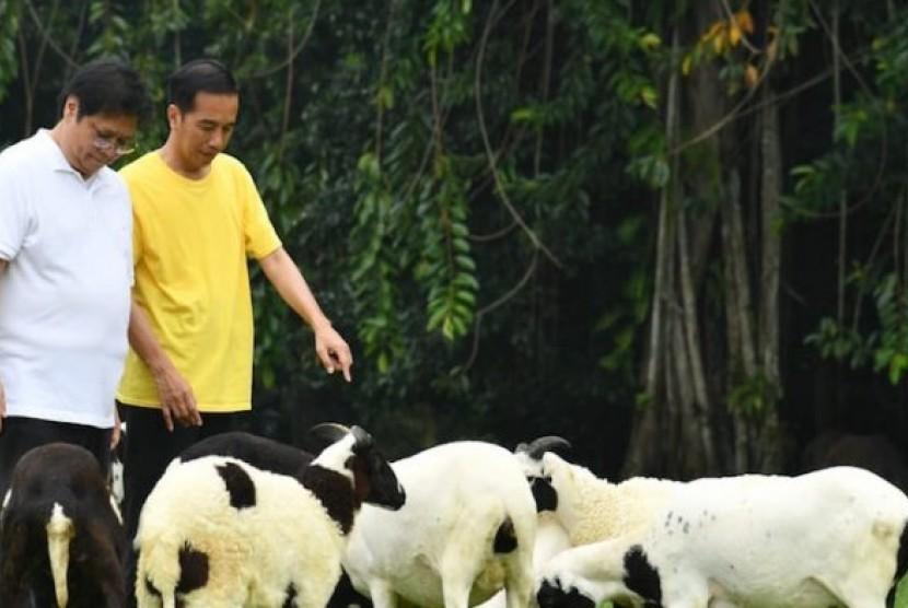 Jokowi saat bertemu Airlangga Hartarto.