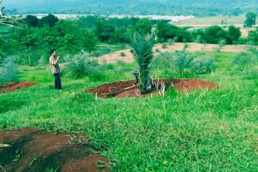 Kampoeng Kurma