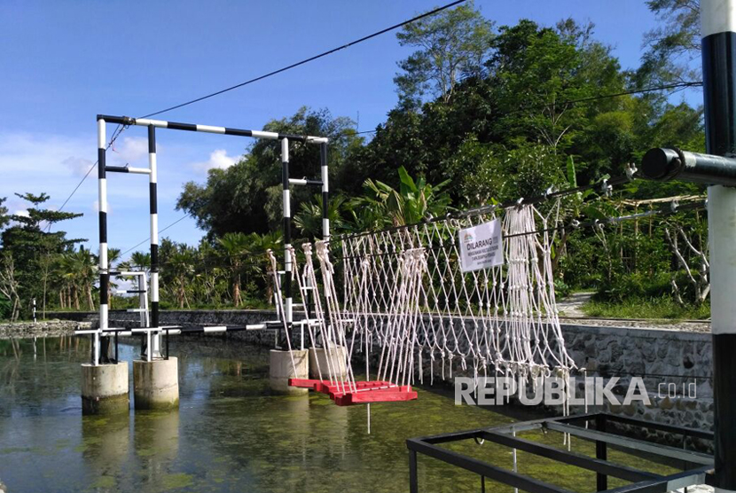Kampung Flory, Homestay Desa Wisata Tanaman Hias dengan Kolam Terapi Ikan.