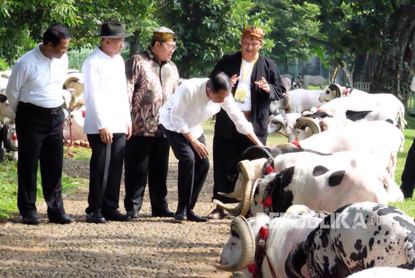 Staf Presiden, Kementan serta Himpunan Peternak Domba dan Kambing Indonesia (HPDKI) menggelar Jambore Peternakan Nasional 2017 di Bumi Perkemahan dan Taman Wisata Cibubur. Acara akan berlangsung pada Jumat (22/9) sampai Ahad (24/9).