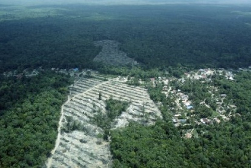 Kawasan Restorasi Hutan Harapan