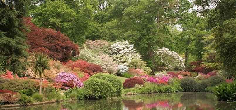Kebun nan hijau (ilustrasi).