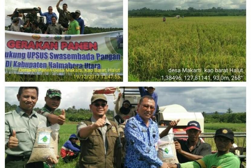 BI Bantu Petani Maluku Utara Mandiri