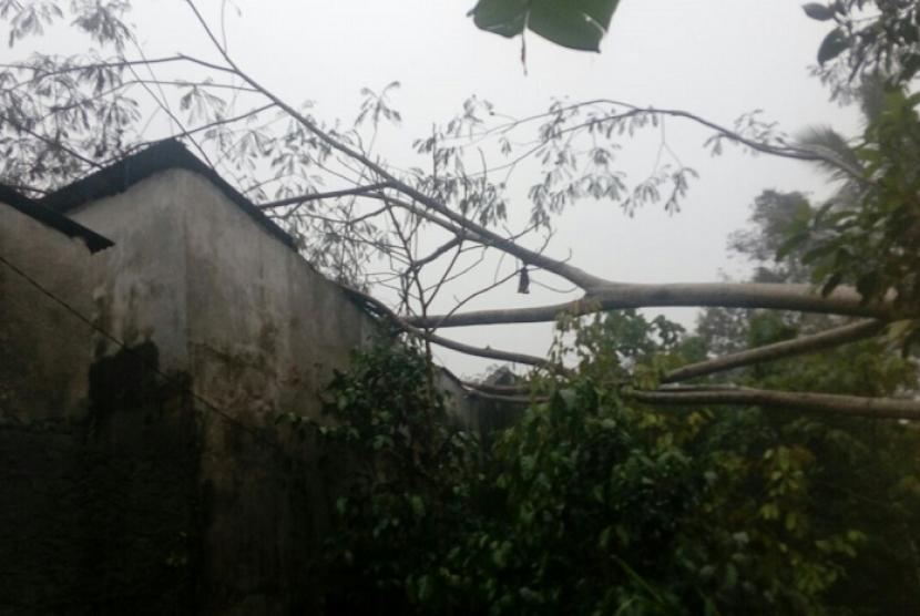 Belasan Rumah di Gunungkidul Tertimpa Pohon Tumbang