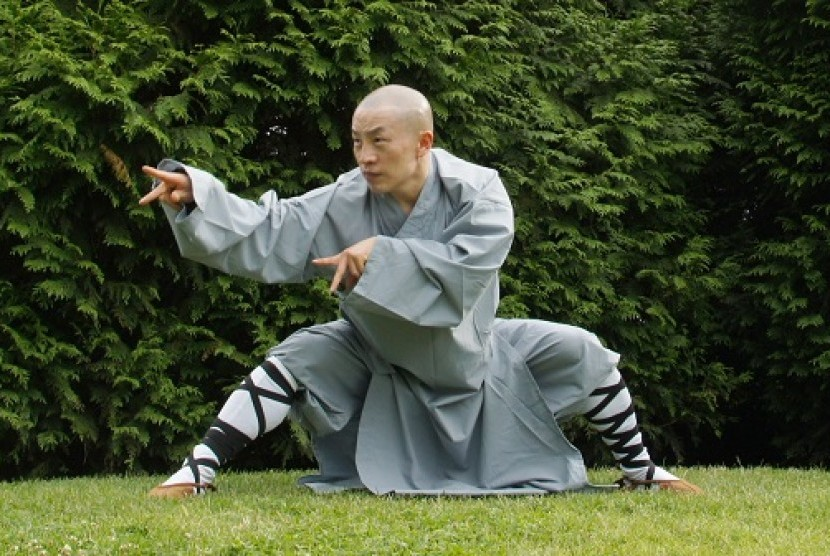 Kung Fu (Ilustrasi)