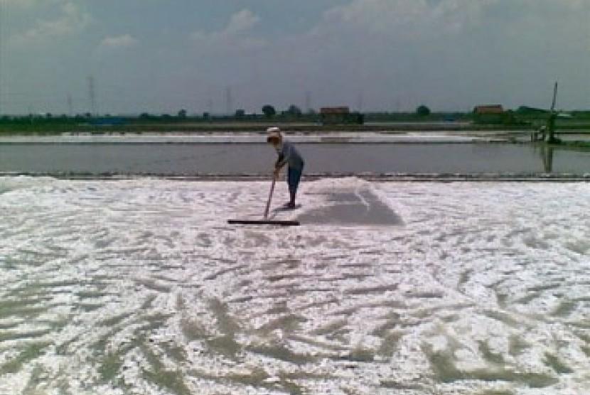 Salt-farming land. (Illustration)