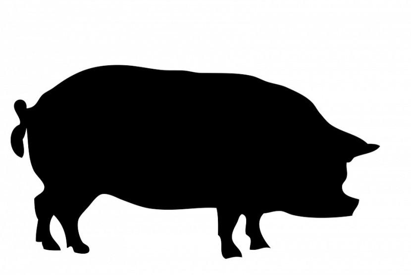 Makanan non-halal mengandung babi