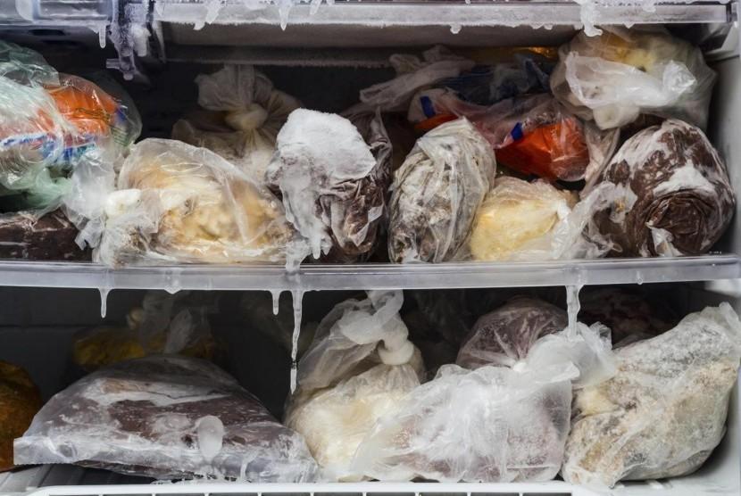 Makanan yang dibekukan di kulkas
