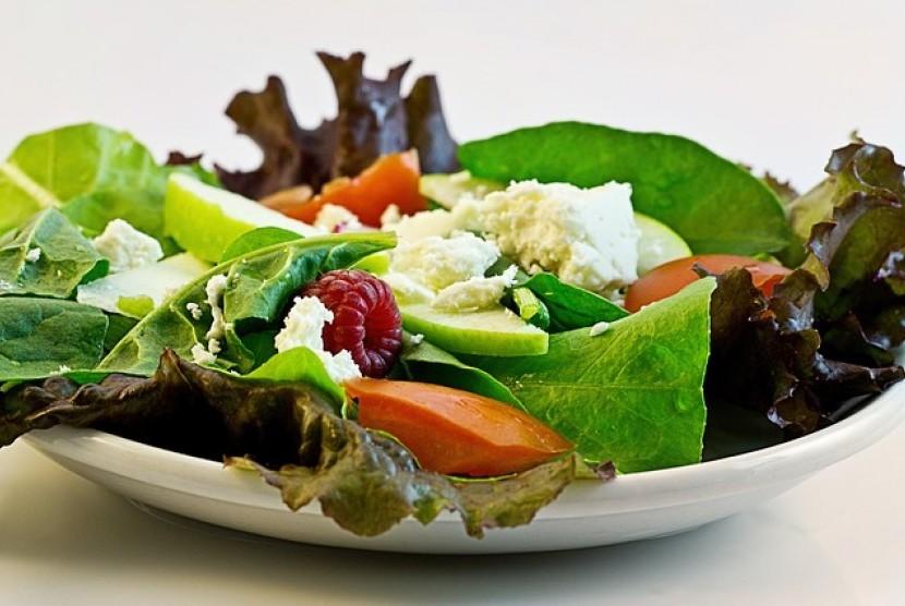 Makanan yang dikonsumsi harus bervariasi jenisnya agar tercukupi kebutuhan karbohidrat, protein, lemak, vitamin, mineral, serat dan cairan yang dibutuhkan oleh tubuh.