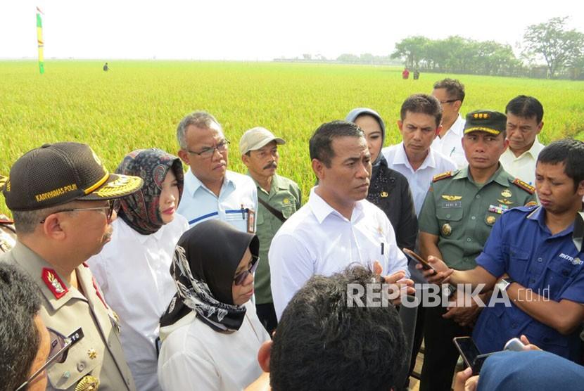 Menteri Pertanian  Amran Sulaiman bersama sejunkah pejabat melakukan panen padi di Kabupaten Karawang.