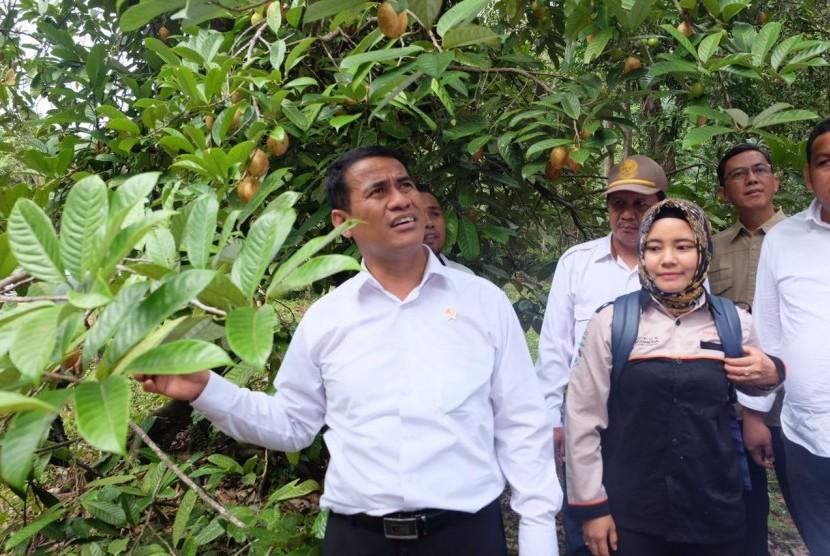 Menteri Pertanian Andi Amran Sulaiman meninjau potensi pertanian di Konawe Kepulauan.