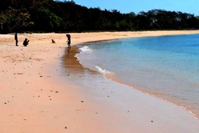 Pantai pink juga ada di Lombok