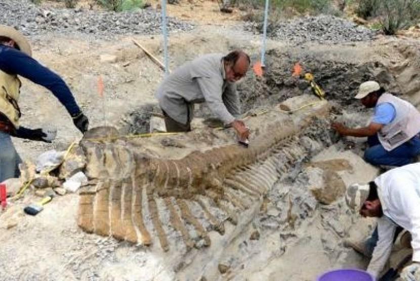 Image result for gambar temuan arkeologis dinosaurus