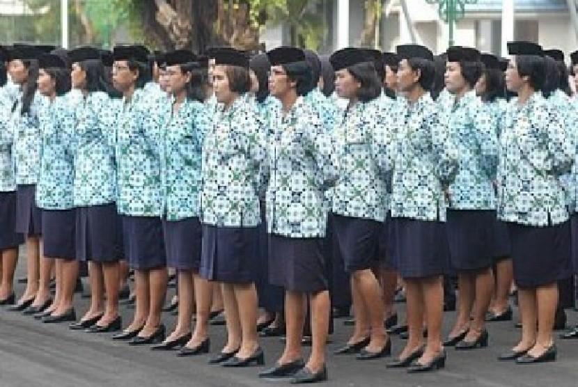 Pegawai Negeri Sipil (PNS)