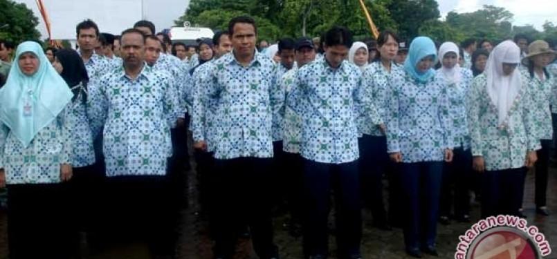 Pegawai Negeri Sipil/PNS (ilustrasi)