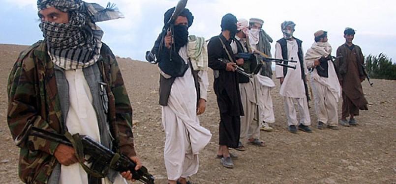 Pejuang Taliban, Afghanistan