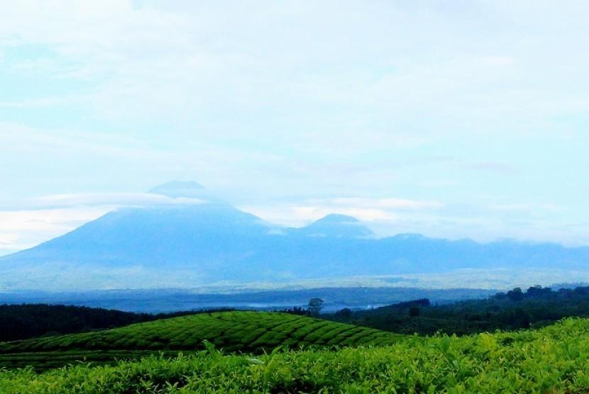 Pemandangan dari Bukit Inspirasi di kawasan wisata Gucialit dengan latar puncak gunung Lemongan, Argopuro dan Raung