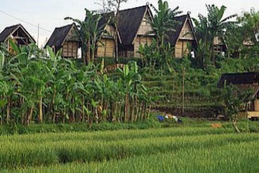 FAO Ingatkan Indonesia Soal Investasi di Pedesaan