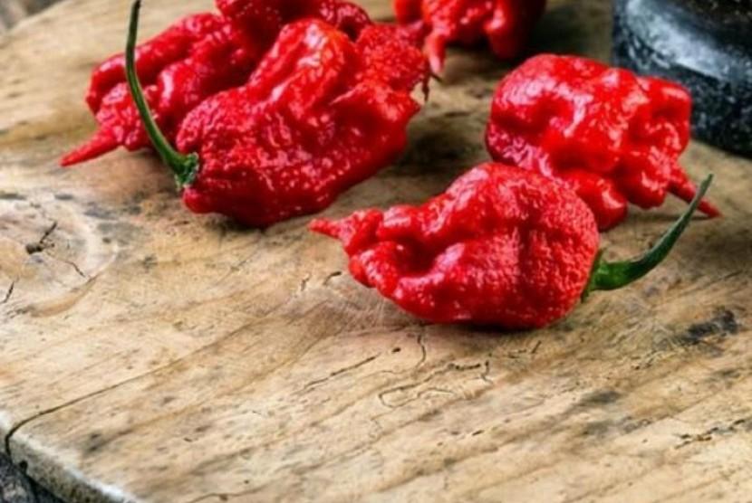 pepper x