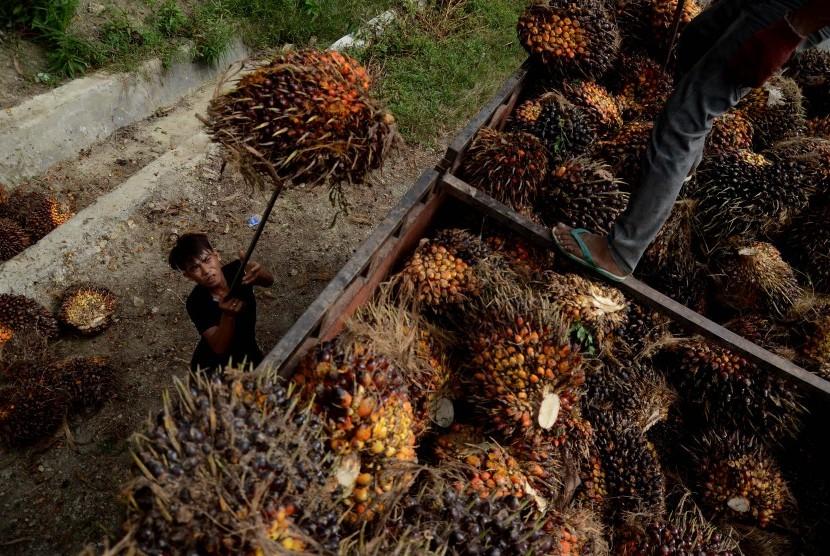 Indonesia Sosialisasikan Sawit Lestari ke Warga Asing