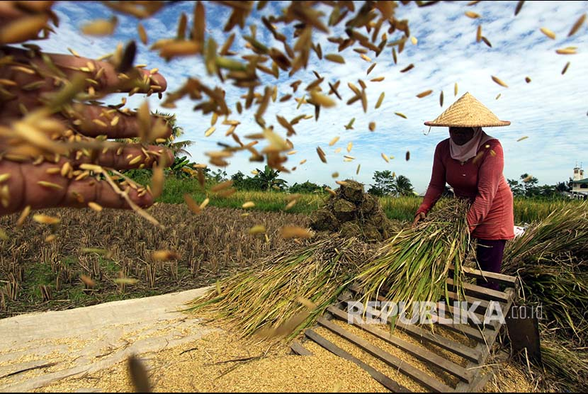 Bulog Indramayu Sediakan 11 Ribu Ton untuk Operasi Pasar