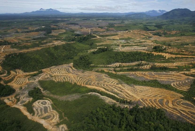 Potret udara hutan di Kapuas Hulu, Kalimantan Barat.