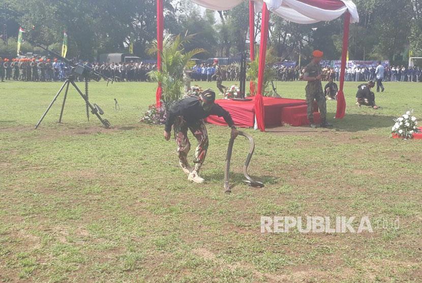 Prajurit Komando Pasukan Khusus (Kopassus) TNI AD melakukan aksi menaklukan ular Kobra di Lapangan Rajawali, Kota Cimahi, Kamis (5/10). Kegiatan dilaksanakan Kodim 0609/Kabupaten Bandung dalam rangka Hari Ulang Tahun (HUT) TNI ke 72.