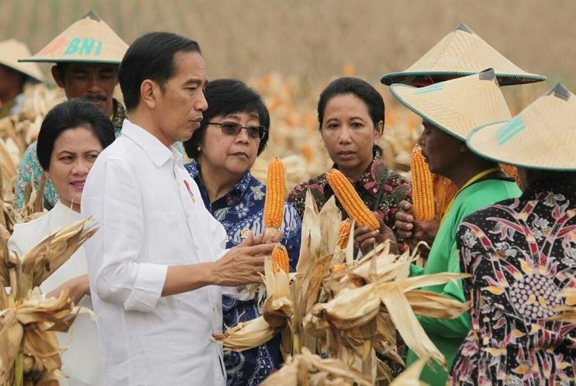 Presiden serahkan 13 SK perhutanan sosial seluas 8.975 hektare.