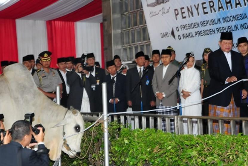 Presiden Susilo Bambang Yudhoyono menyerahkan sapi kurban ke pengurus Masjid Istiqlal Jakarta usai salat Iedul Adha 1432 lalu