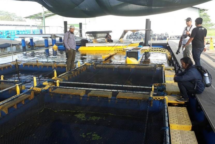 Produk dalam negeri, Keramba Jaring Apung (KJA) Offshore Submersible dengan brand AquaTec milik PT Gani Arta Dwitunggal, produsen peralatan kelautan dan perikanan perdana menembus pasar ekspor luar negeri ke Provinsi Hainan, Cina, Sabtu (17/6). Teknologi yang pertama di Asia Tenggara ini diklaim memiliki keunggulan dari KJA yang berasal dari Eropa.
