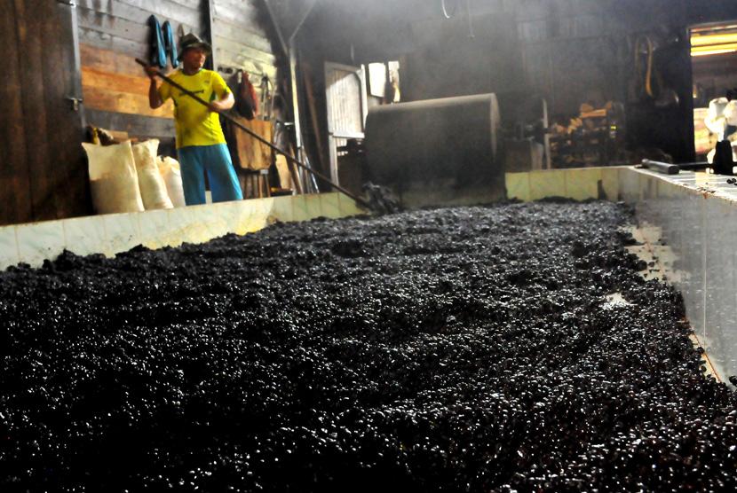 Produksi kopi tradisional. (ANTARA/Ampelsa)