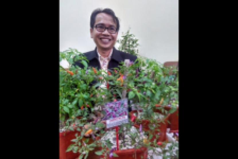Prof Muhammad Syukur, peneliti cabai dari IPB Bogor.