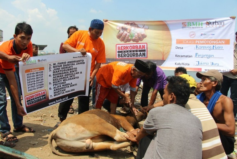 Permalink to Kurban Masuk Desa BMH Sasar Pembangunan Berkelanjutan