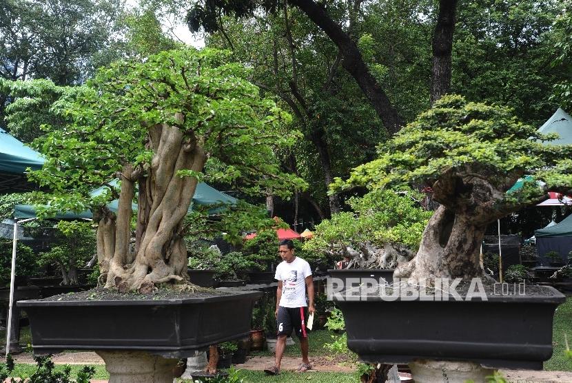 Ragam tanaman hias dijual pada pameran Flora dan Fauna Indonesia (Florina) 2016 Lap Banteng, Jakarta, Jumat (29/4).Republika/Tahta Aidilla